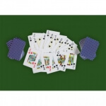 Poker set 300ks žetonů 1-1000 design Ultimate - karty